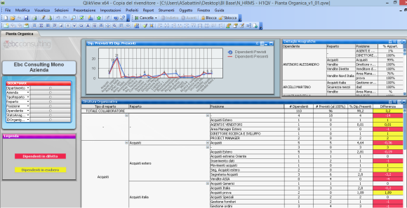 Pianta organica risorse umane con H1 Hrms Business intelligence hr QlikView